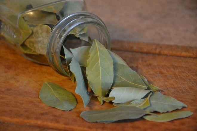 Лікування циститу лавровим листом